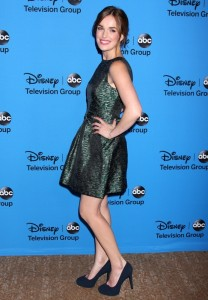 ABC TCA Summer 2013 Party